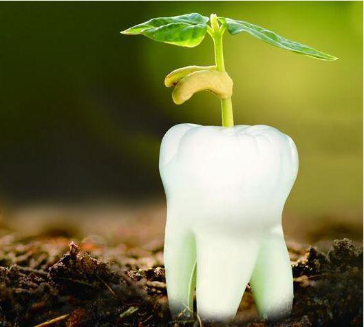 年齡會唔會影響種牙效果